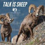 EP 16: A $20 Desert Sheep Hunt, with Glen Landrus (Wild Sheep Foundation)