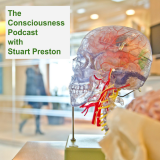 The Consciousness Podcast