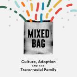Mixed Bag: Culture, Adoption and the Transracial Family