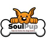SoulPup: Tips & Tricks for Dog Lovers