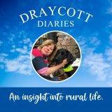 Draycott Diaries